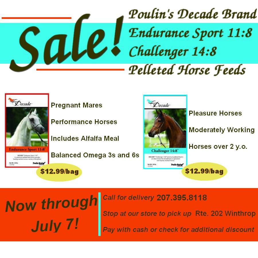 Decade Challenger Endurance Sport Current Sale $12.99 per bag